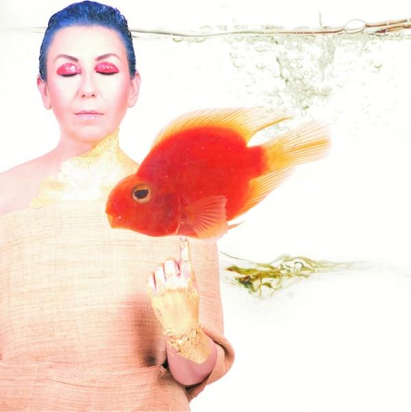 014 - Balık Agaca